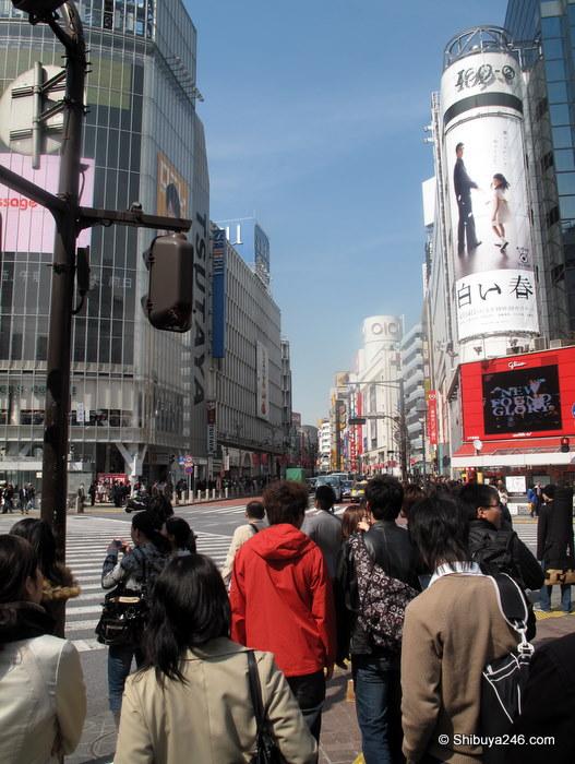 Scramble Crossing Shibuya