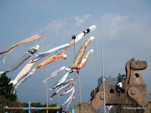 A closeup of the Koinobori
