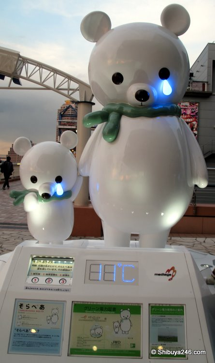 Solar Bear at Odaiba