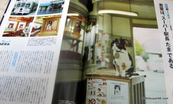 official cat mascot at Tama station