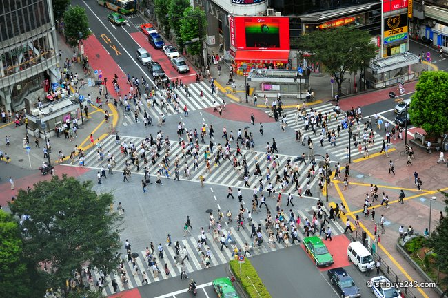 A quiet day at the Shibuya scramble crossing