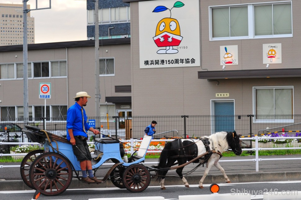 A man drives a horse buggy through the streets for tourists, while in the background the Yokohama Y150 character looks on