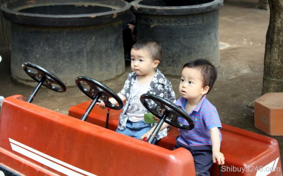 Driving themselves to the kindergaten