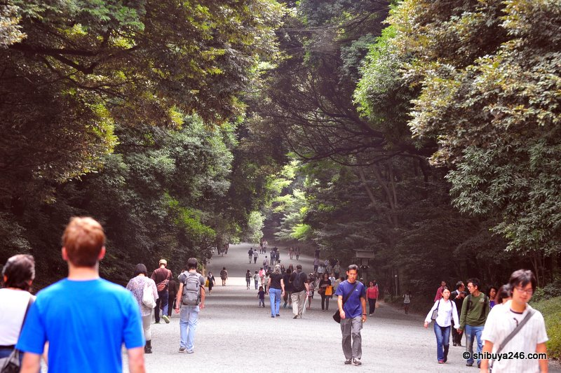 The walk down the gravel pathway in the shade of the trees is very peaceful despite the crowd