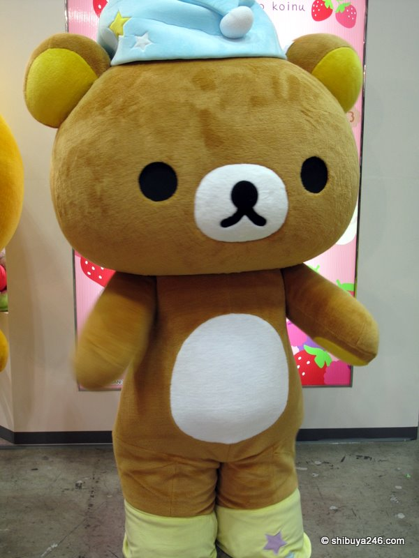 Rilakkuma in the flesh