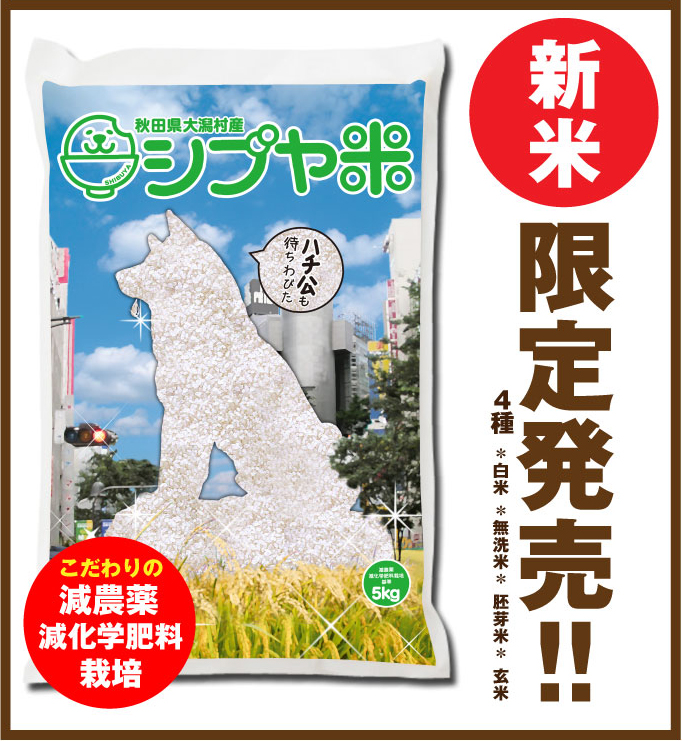 Shibuya Rice on Rakuten