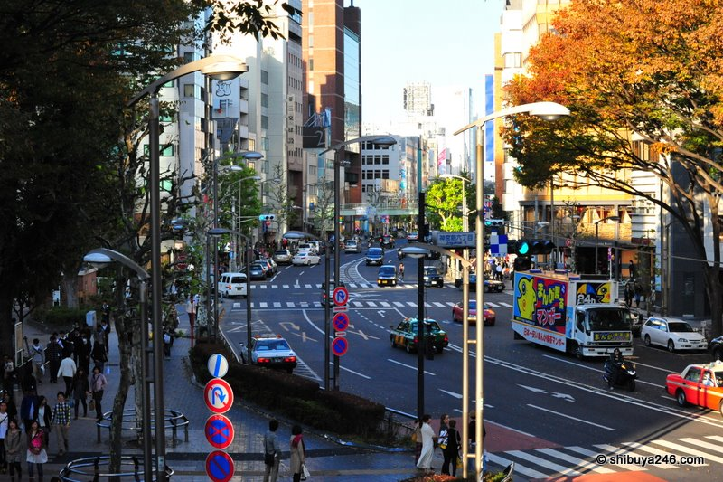 Crossing the road using the overpass. This is the view looking down towards Harajuku.
