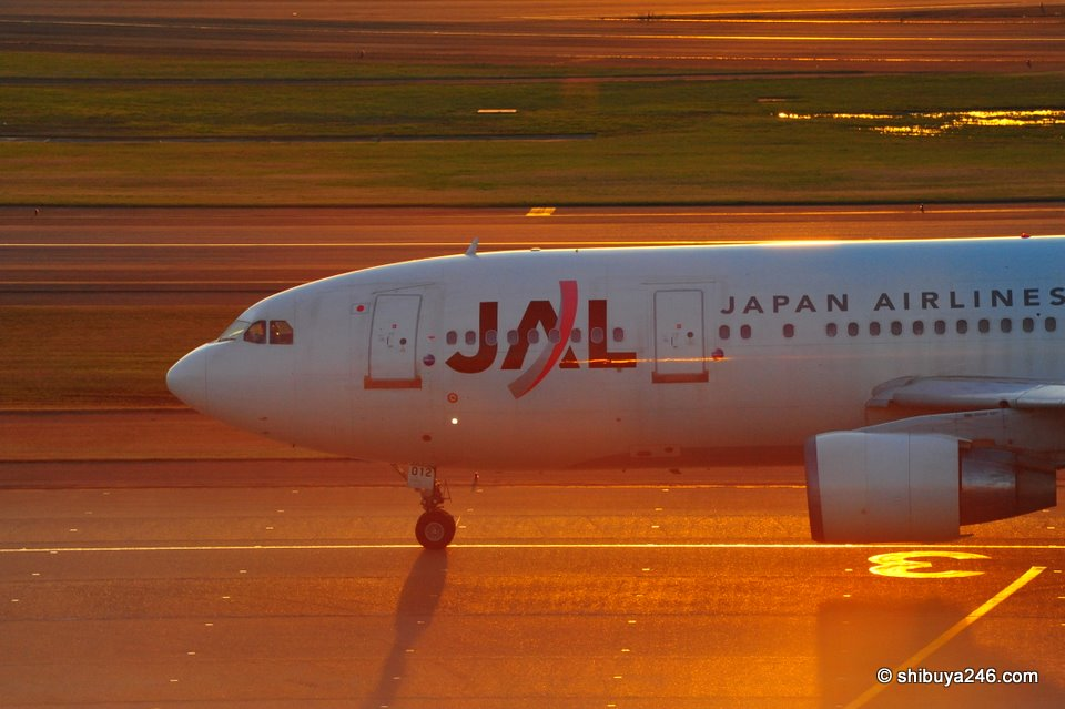 Japan Airlines, JAL at Haneda Airport. Is the sun setting on the Japanese flag bearer?