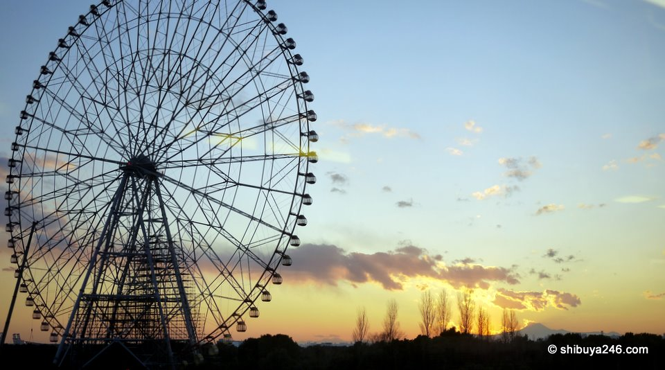 The ferris wheel at Rinkai Kasai Koen makes a nice backdrop for this photo